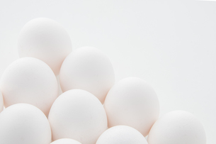 Chicken eggs on white background. Fresh chicken egg image.の写真素材 [FYI04062469]