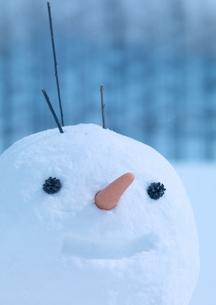 雪原の雪だるまの写真素材 [FYI04063832]