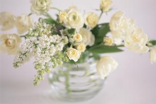 ガラス花瓶に生けた白バラ・ライラック等の写真素材 [FYI04063928]