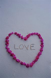 ビーチの花びらハートとLOVEの文字の写真素材 [FYI04064463]