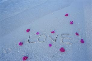 ビーチの花びらとLOVEの文字の写真素材 [FYI04064464]