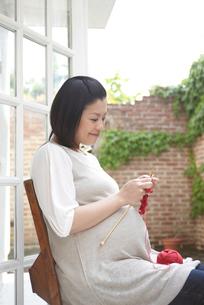 編み物をする妊婦の写真素材 [FYI04065509]
