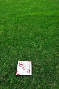 板の上に赤唐辛子で書かれたエコの文字の写真素材 [FYI04066065]