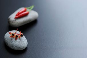 石の上のヒペリカムと赤唐辛子の写真素材 [FYI04066109]