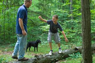 森の中で遊ぶ犬と大人と子供の写真素材 [FYI04066218]