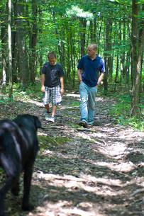 森の中を歩く大人と子供と犬の写真素材 [FYI04066219]