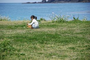 花摘みをする女の子の写真素材 [FYI04066290]