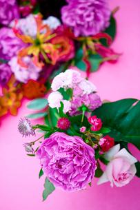 花(シャクヤク バラ ギボウシ グロリオサ)の写真素材 [FYI04066738]