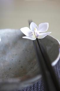 和食器と箸とランの写真素材 [FYI04066813]