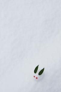 雪で作った雪うさぎの写真素材 [FYI04066921]