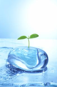 若葉と流水とガラスのオブジェのイラスト素材 [FYI04067211]