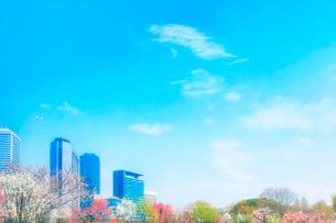 春の大阪城公園の写真素材 [FYI04067247]