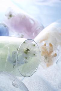 グラスのリボンとデルファニウムの写真素材 [FYI04067398]