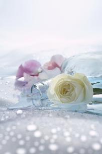バラとスイトピーとガラス瓶の写真素材 [FYI04067405]