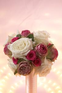 バラの花と光の写真素材 [FYI04067412]
