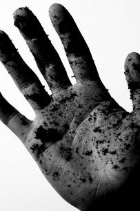 土が付いてる男性の手の写真素材 [FYI04067444]