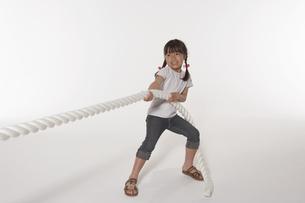 綱引きをする女の子の写真素材 [FYI04067489]