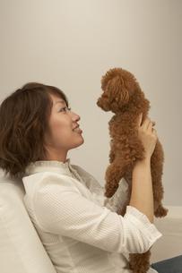 ソファーで犬と遊ぶ女性の写真素材 [FYI04067530]