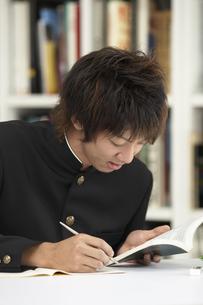 図書室で勉強をする男子学生の写真素材 [FYI04067757]
