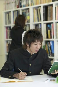 図書室で勉強をする男子学生と本を探す女子学生の写真素材 [FYI04067761]