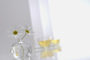 ガラスの花器に生けた花とカップの写真素材 [FYI04067962]