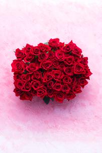 ピンクのバック赤いバラの花束の写真素材 [FYI04068159]