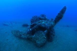 海底に沈むゼロ戦,海中の写真素材 [FYI04068171]