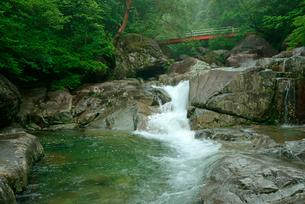 片知渓谷(かたぢけいこく) 千畳岩から上流の岳水橋を望むの写真素材 [FYI04068433]