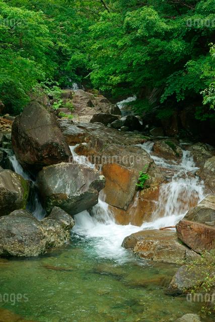 片知渓谷(かたぢけいこく) 岳水橋から上流の滝を望む の写真素材 [FYI04068436]