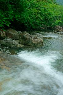 片知渓谷(かたぢけいこく) 千畳岩から下流を望むの写真素材 [FYI04068437]