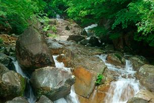 片知渓谷(かたぢけいこく) 岳水橋から上流の滝を望む の写真素材 [FYI04068439]