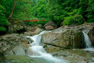 片知渓谷(かたぢけいこく) 千畳岩から上流の岳水橋を望む の写真素材 [FYI04068440]