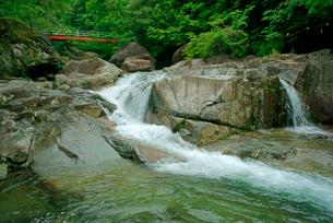 片知渓谷(かたぢけいこく) 千畳岩から上流の滝と岳水橋を望むの写真素材 [FYI04068441]