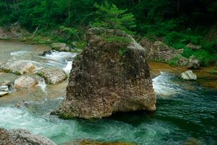 鳳来峡・板敷川(別称)宇連川 たち岩 の写真素材 [FYI04068443]