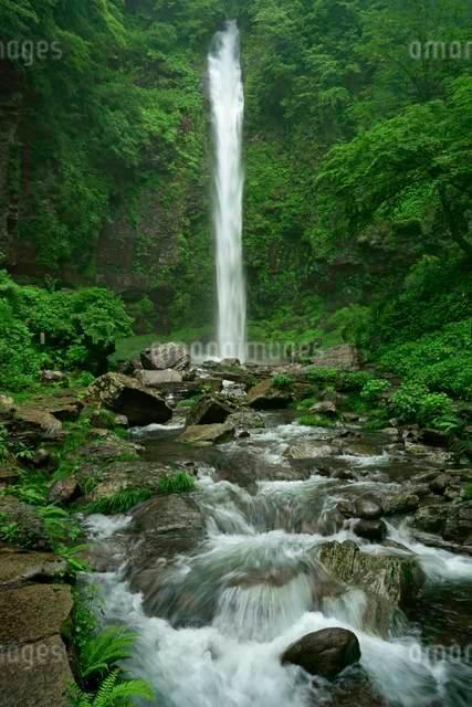 阿弥陀ヶ滝 の写真素材 [FYI04068446]