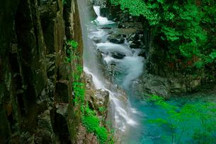 観音滝(左)と東股谷川 付知峡の写真素材 [FYI04068449]