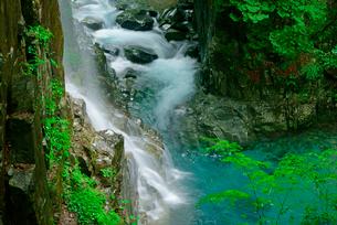 観音滝(左)と東股谷川 付知峡の写真素材 [FYI04068450]