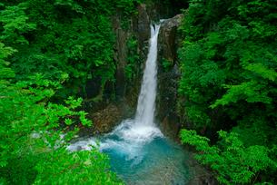 高樽の滝 付知峡 の写真素材 [FYI04068451]