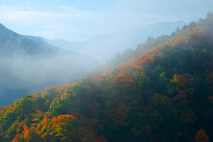 霧の鳥居峠・旧中山道より南東を望む,の写真素材 [FYI04068501]