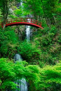 五宝滝の写真素材 [FYI04068534]