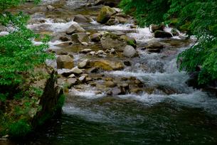 青屋川・飛騨川の支流 乗鞍橋より上流を望むの写真素材 [FYI04068637]