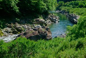 飛騨川下流を望む の写真素材 [FYI04068654]