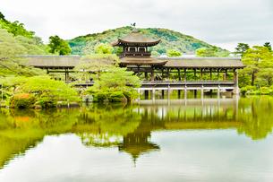 平安神宮 橋殿 の写真素材 [FYI04069007]