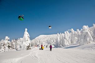 樹氷原コースのスキーヤーの写真素材 [FYI04069027]