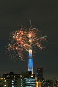 江東区民まつり亀戸地区祭りの花火とスカイツリーの写真素材 [FYI04069047]