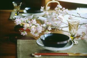春のテーブルセットの写真素材 [FYI04069541]