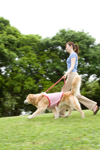 公園での若い女性と愛犬の写真素材 [FYI04069563]