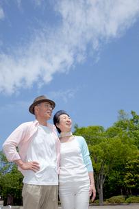 公園で風景を眺めているシニア夫婦の写真素材 [FYI04069755]