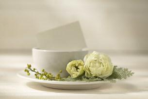 花と食器の写真素材 [FYI04069972]