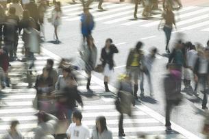 スクランブル交差点の人波の写真素材 [FYI04070065]